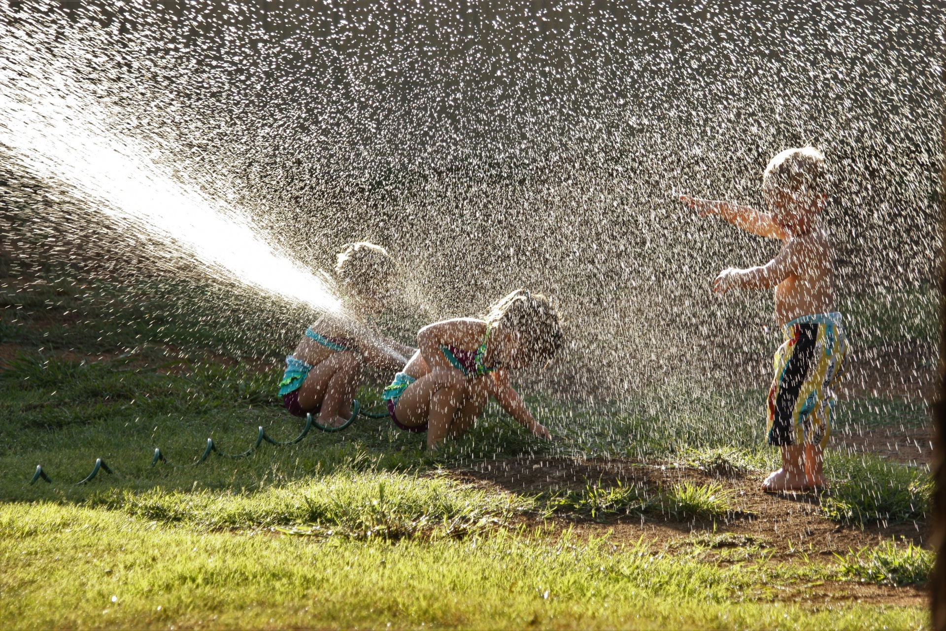 Children playing in water sprinkler